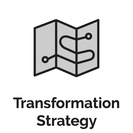 Transformation Strategy, Roadmap & Playbook Development